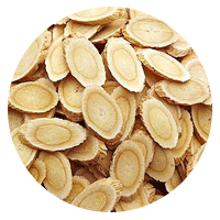 Astragalus root for increasing metabolism and improving digestion